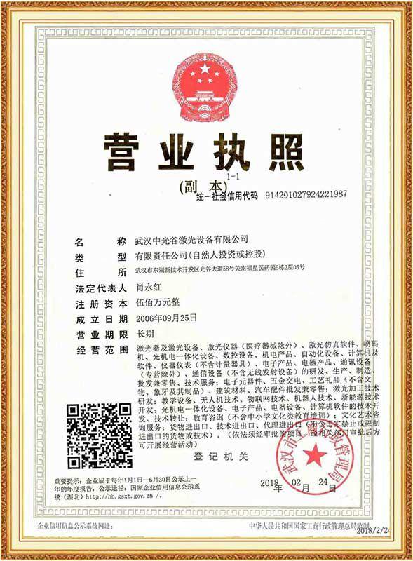 Business license ovlaser